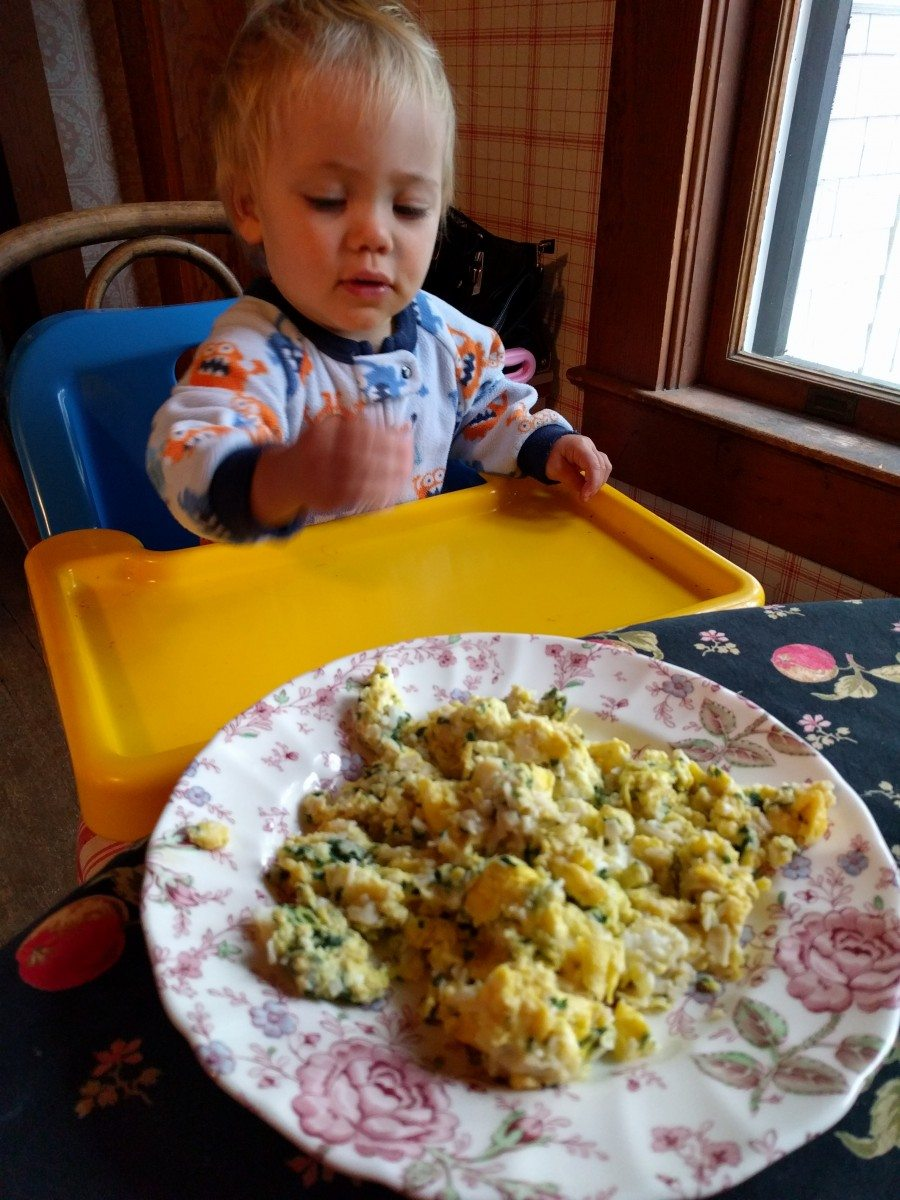 Baby Food Recipes: Scrambled Eggs