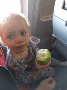 Freya with an apple on the airplane